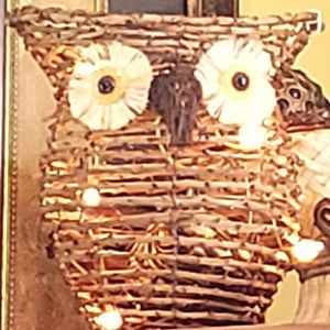 Wicker owl night light